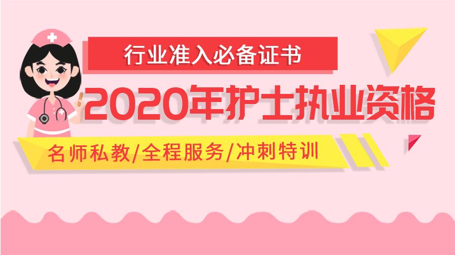 2020版护士执业资格考试宝典-专项提分班